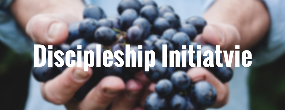 Discipleship Initiative